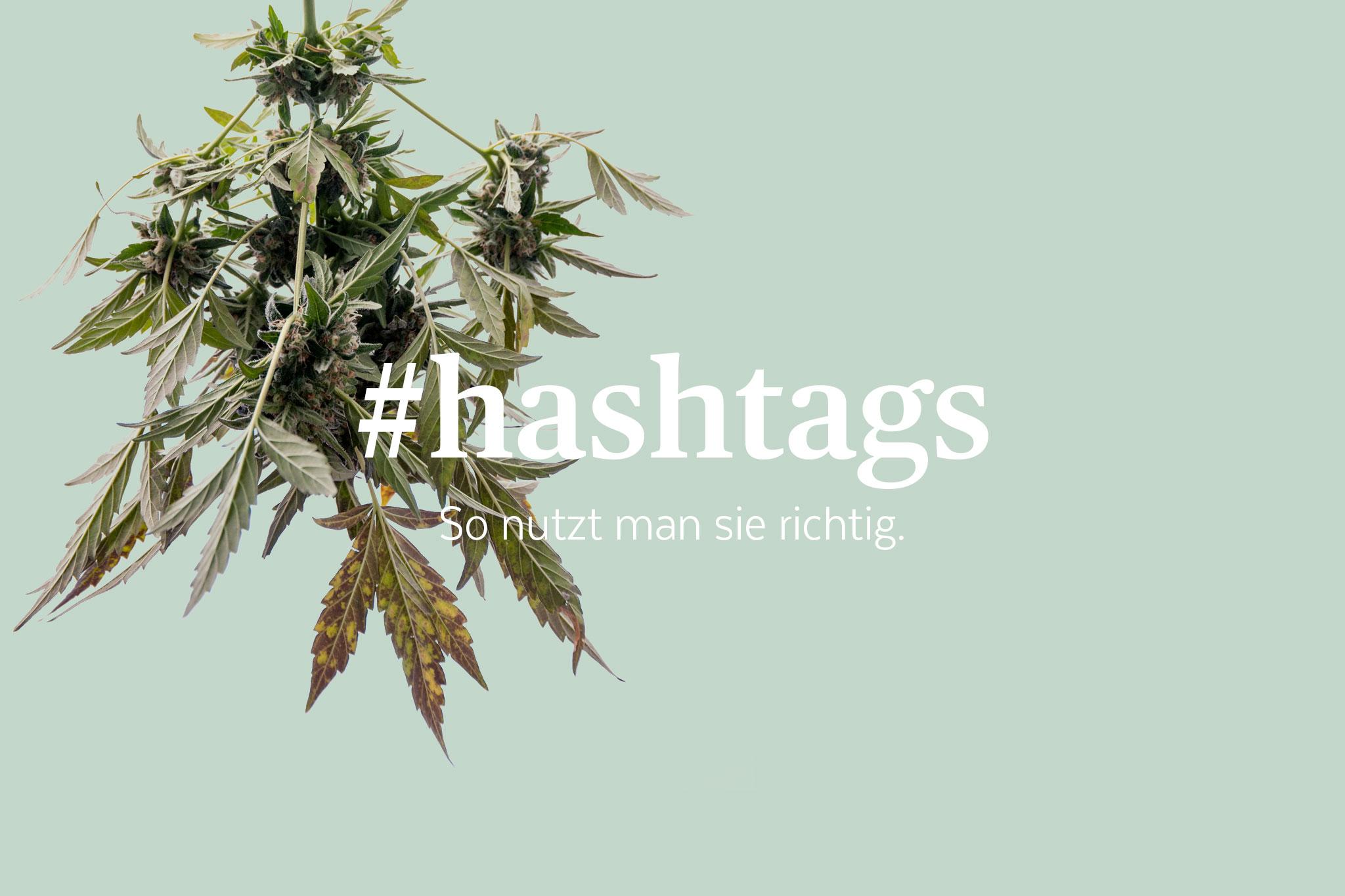 socialmedia #hashtags