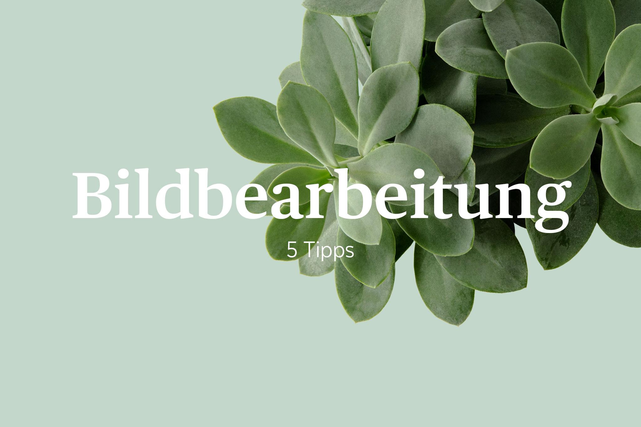 Titelbild für Blogbeitrag mit Schriftzug Bildbarbeitung